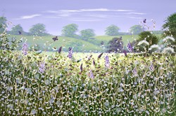 Meadow in Bloom by Mary Shaw - Original Painting on Board sized 36x24 inches. Available from Whitewall Galleries